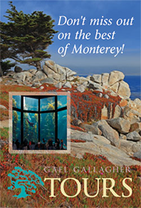 Don't Miss Out On The Best of Monterey